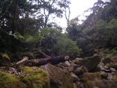 20130302_水漾森林:IMGP0009.JPG