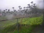 98/8/8 莫拉克颱風-山區受創:IMGP0075.JPG