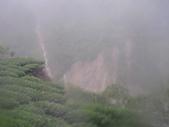 98/8/8 莫拉克颱風-山區受創:IMGP0078.JPG