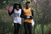 大兒子參加的馬拉松比賽:2012雙溪櫻花馬