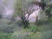 98/8/8 莫拉克颱風-山區受創:IMGP0079.JPG