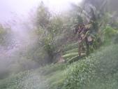 98/8/8 莫拉克颱風-山區受創:IMGP0080.JPG