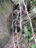 20130302_水漾森林:IMGP0011.JPG