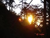20081130登奇萊北峰:DSC06640.JPG