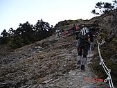 20081130登奇萊北峰:DSC06656.JPG