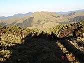 20081130登奇萊北峰:DSC06673.JPG