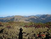 20081130登奇萊北峰:DSC06678.JPG