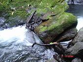 20060711/12下溯三光溪/划泰岡溪接玉峰溪:DSC08973
