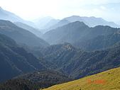 20081130登奇萊北峰:DSC06730.JPG