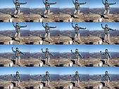 20081130登奇萊北峰:DSC06740.JPG