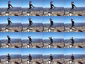 20081130登奇萊北峰:DSC06741.JPG