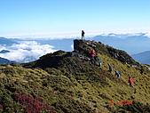 20081130登奇萊北峰:DSC06747.JPG
