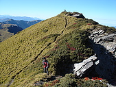 20081130登奇萊北峰:DSC06750.JPG