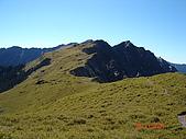 20081130登奇萊北峰:DSC06754.JPG