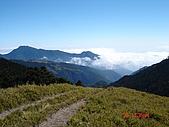 20081130登奇萊北峰:DSC06756.JPG