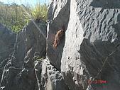 20060813南勢溪階梯段大水行:DSC09546