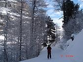 2008瑞士滑雪:DSC04746.jpg
