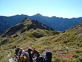 20081130登奇萊北峰:DSC06595.JPG