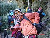 20081130登奇萊北峰:DSC06616.JPG