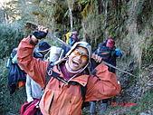 20081130登奇萊北峰:DSC06617.JPG