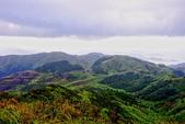 2014年第41周第42周紀錄:20141005登基隆火山群最高峰~燦光寮山34