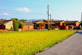 2014年第41周第42周紀錄:20141017苑裡福田社區10