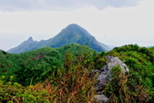 2014年第41周第42周紀錄:20141005登基隆火山群最高峰~燦光寮山38