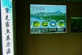 2014年第49周第50周紀錄:20141210板橋435藝文特區