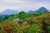 2014年第41周第42周紀錄:20141005登基隆火山群最高峰~燦光寮山32