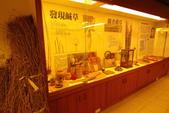 2014年第41周第42周紀錄:20141017苑裡藺草博物館1