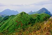 2014年第41周第42周紀錄:20141005登基隆火山群最高峰~燦光寮山36