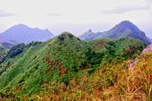 2014年第41周第42周紀錄:20141005登基隆火山群最高峰~燦光寮山35