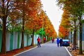 2014年第51周第52周紀錄:20141225大溪龍潭遊