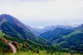 2014年第41周第42周紀錄:20141005登基隆火山群最高峰~燦光寮山40