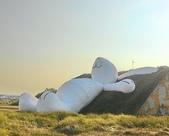 24100912看兔子曬太陽:P_20140912_160900_HDR_1.jpg