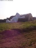 24100912看兔子曬太陽:DSC_0849.jpg
