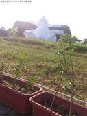 24100912看兔子曬太陽:DSC_0860.jpg