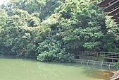 遊後慈湖:DSC_0765.JPG