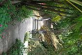 遊後慈湖:DSC_0892.JPG