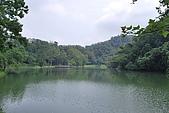 遊後慈湖:DSC_0781.JPG