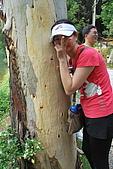 遊後慈湖:DSC_0827.JPG