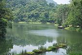 遊後慈湖:DSC_0853.JPG