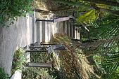 遊後慈湖:DSC_0893.JPG