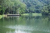 遊後慈湖:DSC_0793.JPG