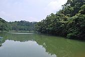 遊後慈湖:DSC_0767.JPG