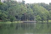 遊後慈湖:DSC_0782.JPG