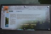 遊後慈湖:DSC_0757.JPG