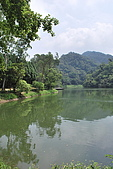 遊後慈湖:DSC_0795.JPG