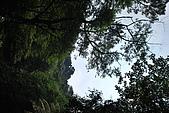 遊後慈湖:DSC_0694.JPG