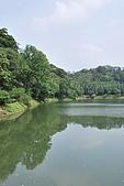 遊後慈湖:DSC_0770.JPG